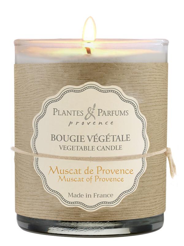 bougie parfum e muscat de provence 180g plantes parfums shop online. Black Bedroom Furniture Sets. Home Design Ideas